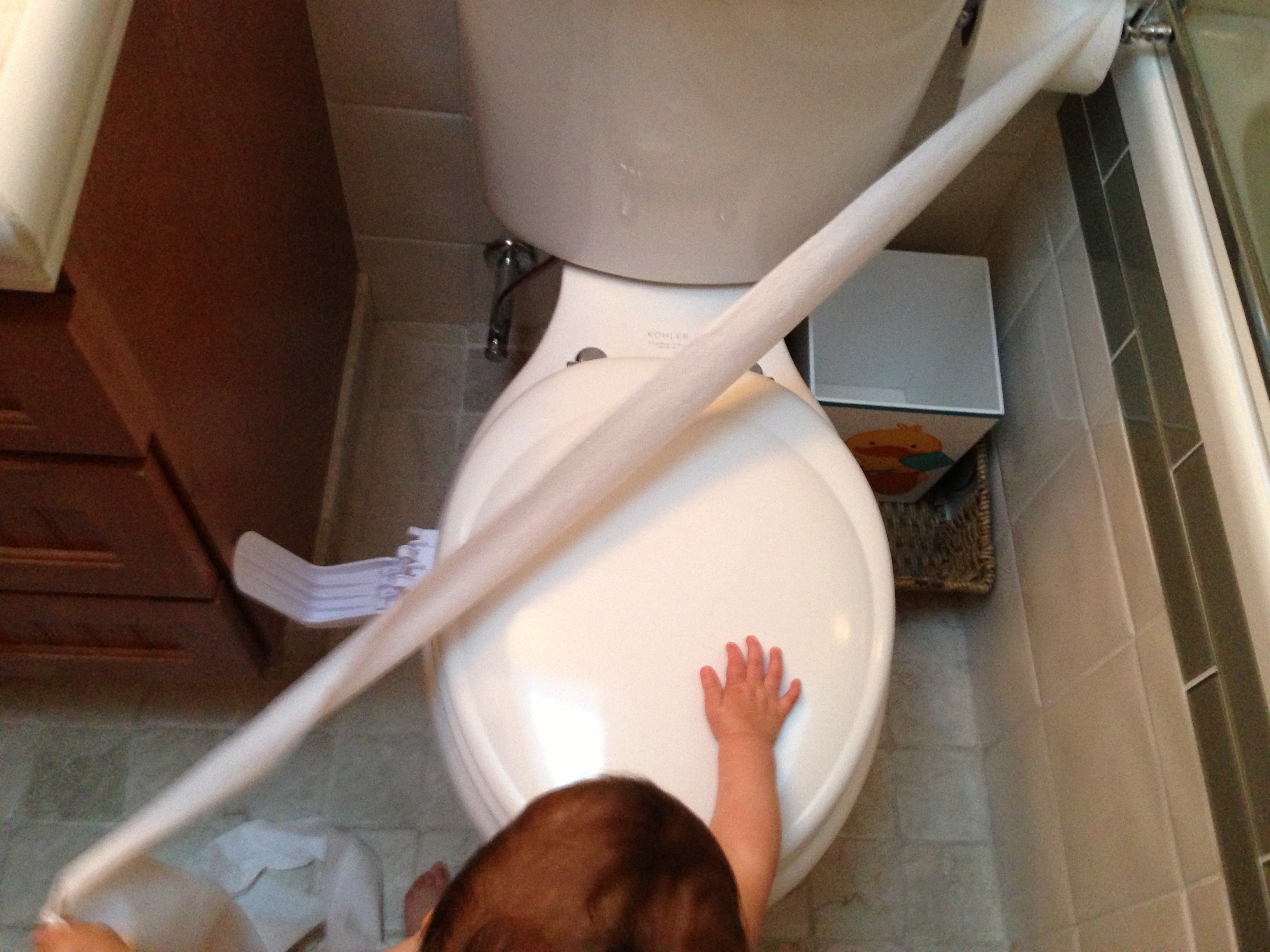 Today's Hint: 6 Ways to Save Toilet Paper Rolls from Toddlers