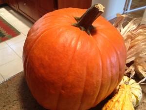 An $18 pumpkin.