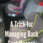 Today's Hint: A Trick for Managing Back Seat Messes